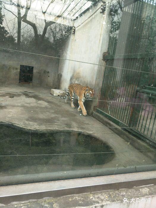 泰州市动物园图片 - 第165张