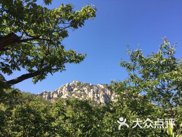 鳞龙山自然风景区图片 - 第6张
