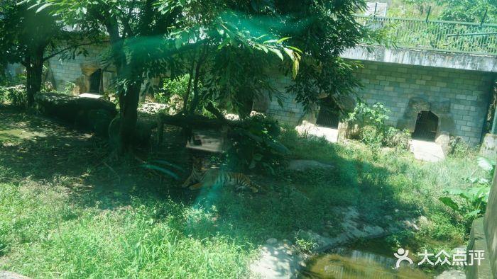 福州动物园图片 - 第204张