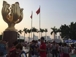 金紫荆广场的图片