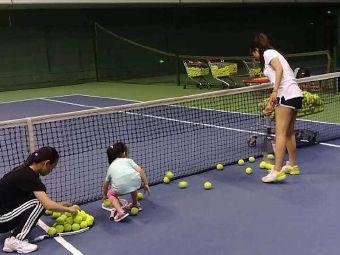专业培训成人网球少年网球