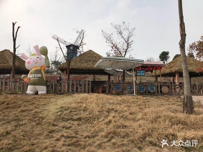 成都童话森林乐园-图片-双流区周边游-大众点评网
