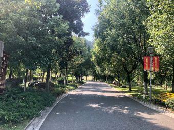 杨府山公园北入口停车场电动汽车充电站