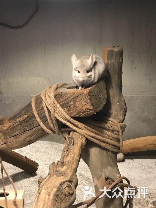 天津zoonly动物主题公园图片 - 第14张