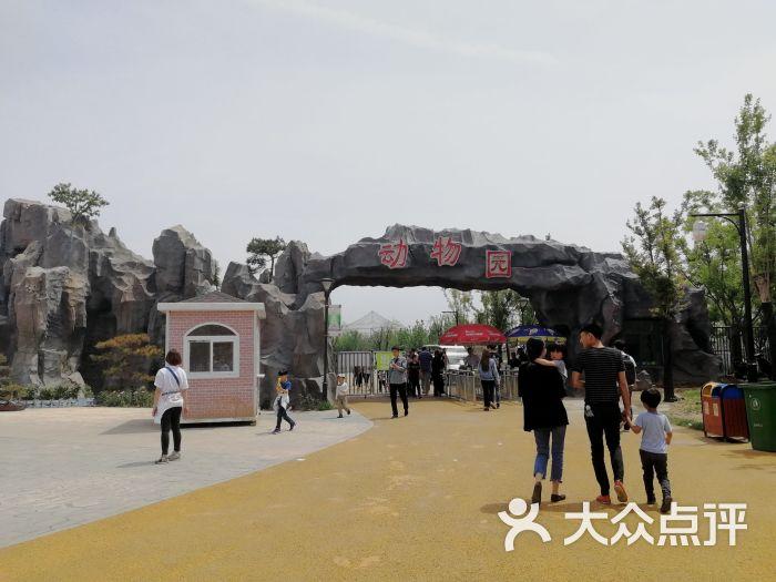 沧州动物园图片 - 第3张