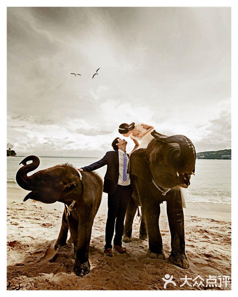 大象 动物 马 骑马