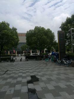 夏日午后D雨的图片