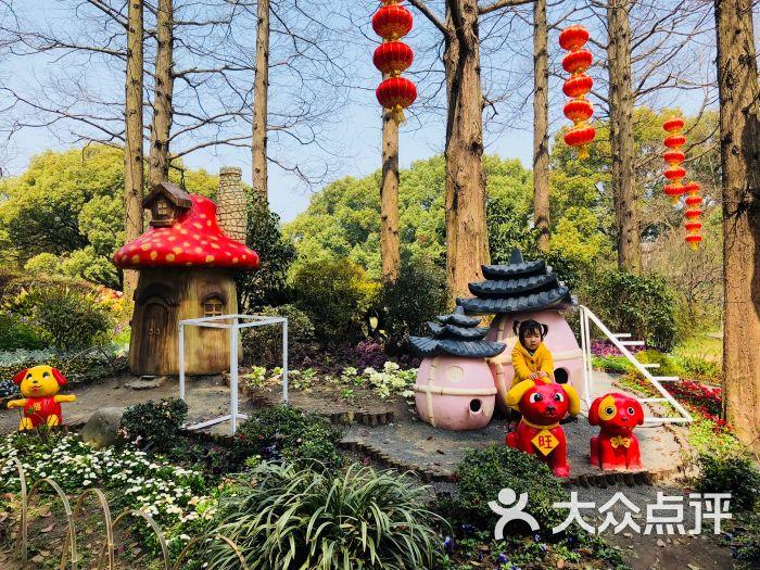 梅園橫山風景區圖片 - 第246張