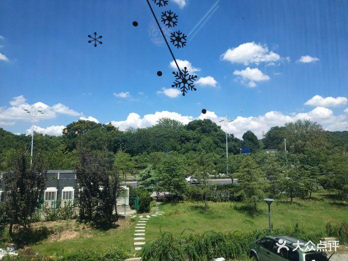 梅園橫山風景區圖片 - 第66張