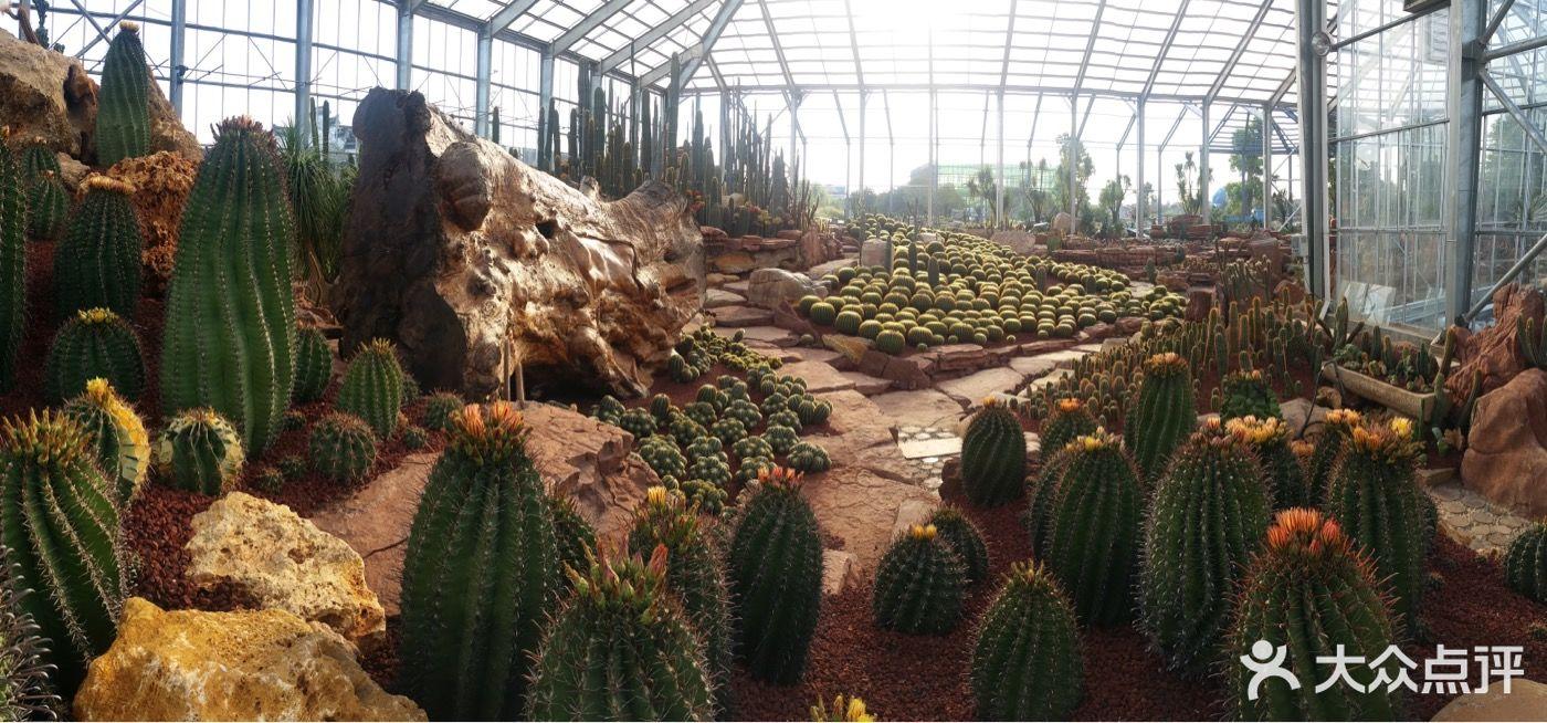 南通洲际绿博园图片 - 第1631张