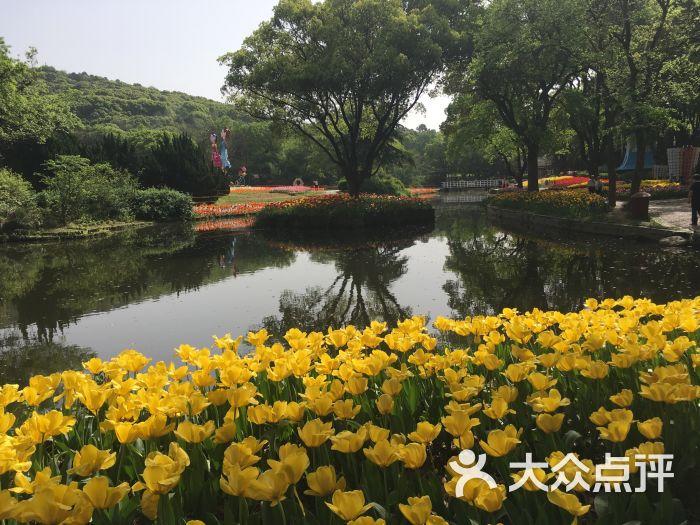 梅園橫山風景區圖片 - 第8張