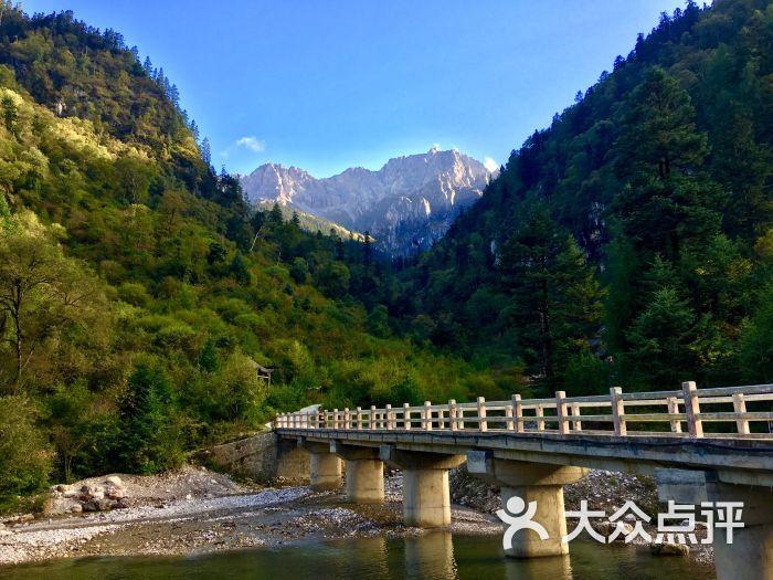 宕昌官鹅沟风景_宕昌官鹅沟国家森林公园景点图片 - 第48张