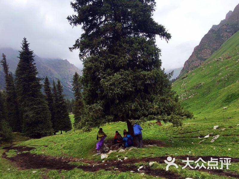 夏塔旅游风景区-图片-昭苏县周边游-大众点评网