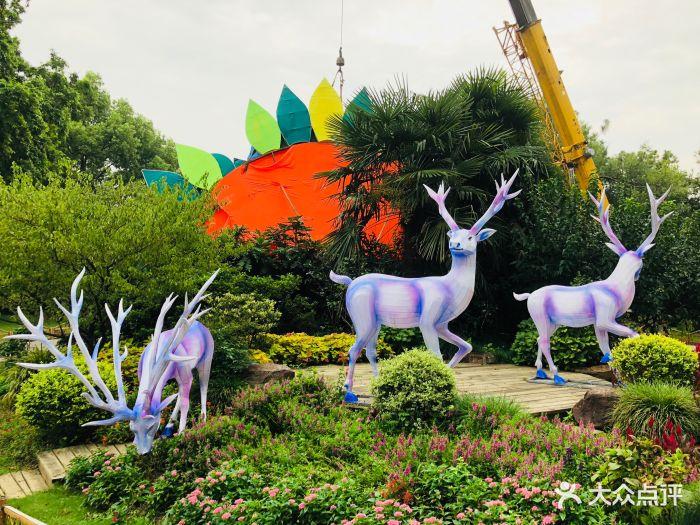 梅園橫山風景區圖片 - 第60張
