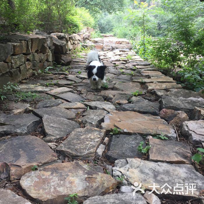 石龍峽風景區圖片 - 第29張