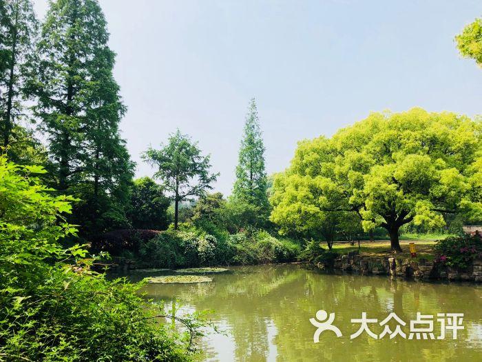 梅園橫山風景區圖片 - 第270張
