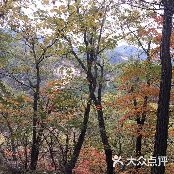 岫岩药山风景区图片-北京自然风光-大众点评网