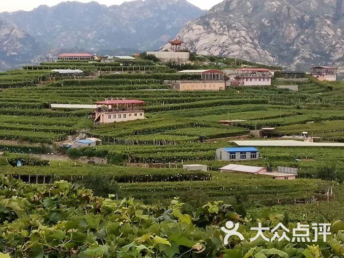 大泽山风景名胜区图片 - 第4张