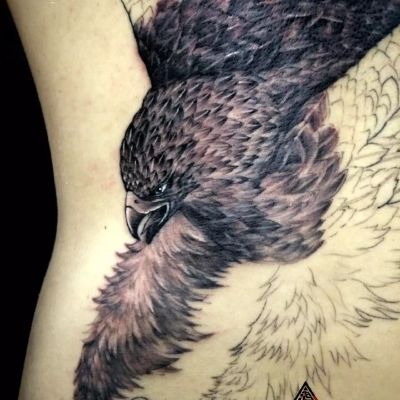 满背鹰 未完成纹身款式图