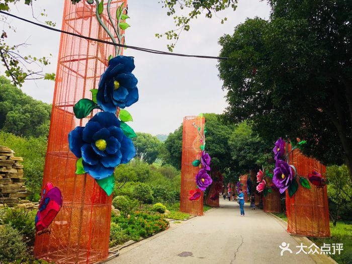 梅園橫山風景區圖片 - 第53張