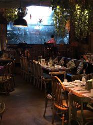 厦门胡桃里音乐餐厅菜谱_胡桃里音乐餐厅(大悦城店)的全部评价-成都-大众点评网